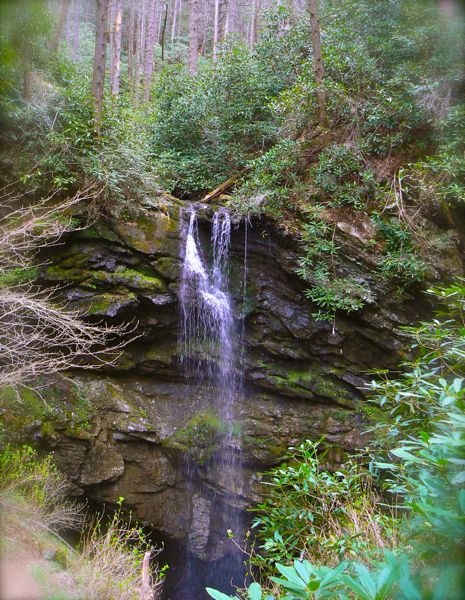 White Oak Falls ~ Hike to white oak sinks with us under the magnifying glass