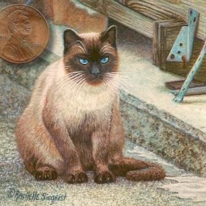 miniature siamese cat painting