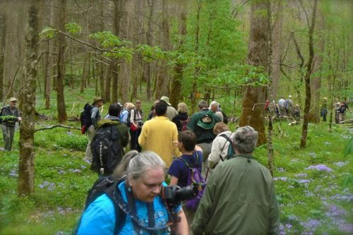hikers at WHite Oak SInks