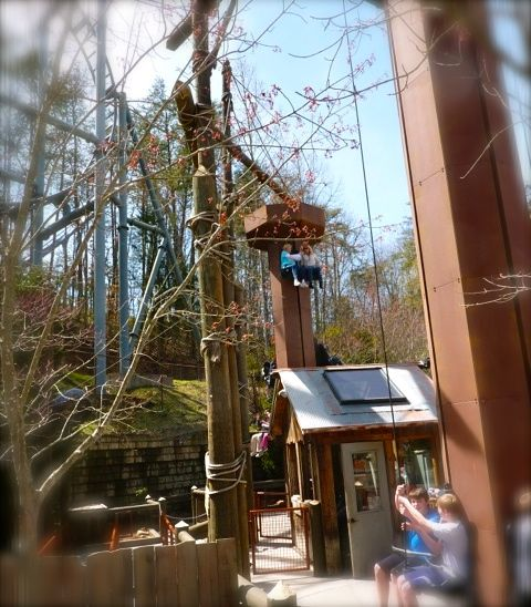 rachelle siegrist riding the lumberjacklifts at dollywood