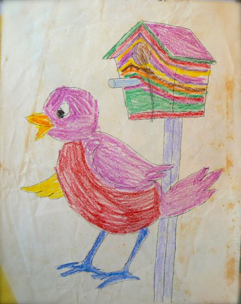 bird drawing by child