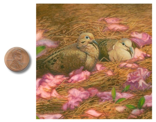 Mourning Dove painting by Rachelle Siegrist