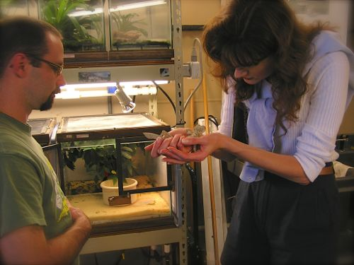 Rachelle Siegrist with a Gecko