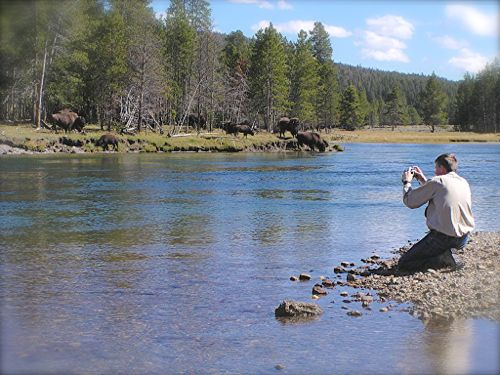 Wes Siegrist photographing Bison in Yellowstone