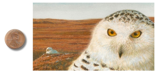 Skylord Snowy Owl painting by Wes & Rachelle Siegrist
