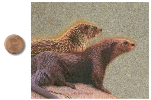 otter painting by Rachelle_Siegrist1