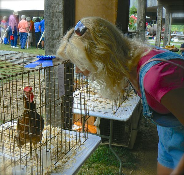 country fair at smoky mounatin heritage center