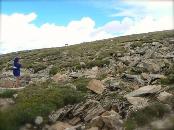 photographing marmots in rocky mountain national park
