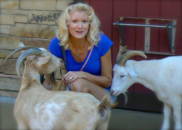 rachelle siegrist petting goats