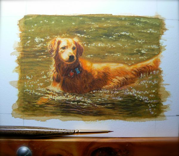 golden retriever dog painting in progress