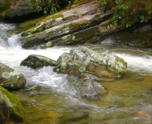 stream inside roaring fork motor trail