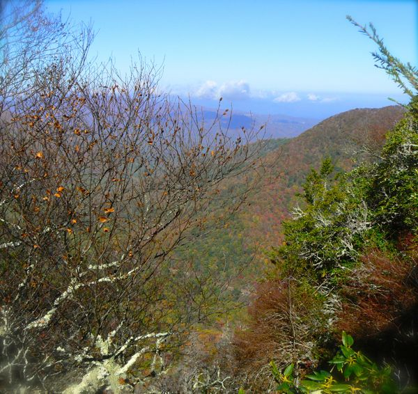view from chimney tops in the fall