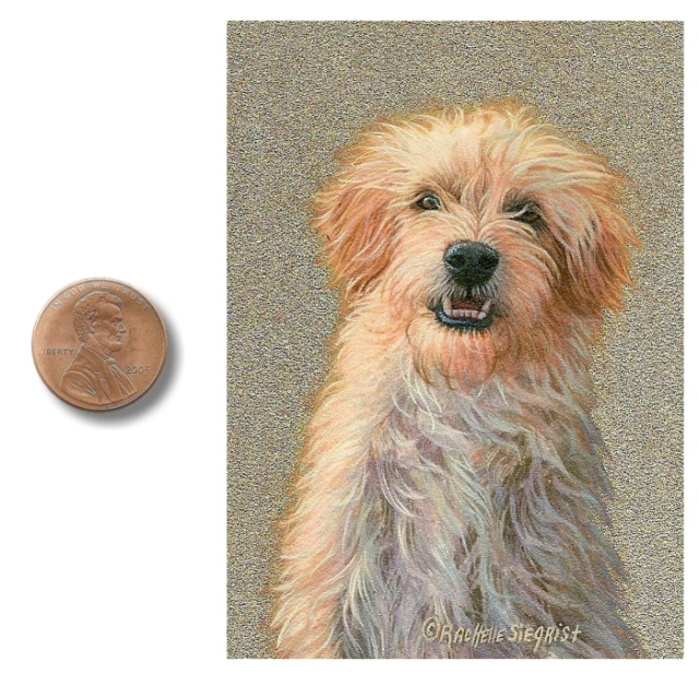 dog painting, dog portrait, miniature painting of a dog by Rachelle Siegrist