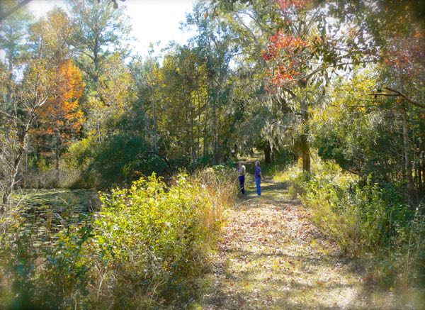 wes siegrist at birdsong nature center