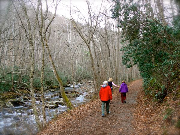 hiking in elkmont in the smoky mounatins