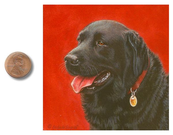 black labrador painting , sporting dog painting by rachelle siegrist