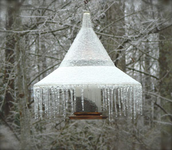 icicles in the smokies