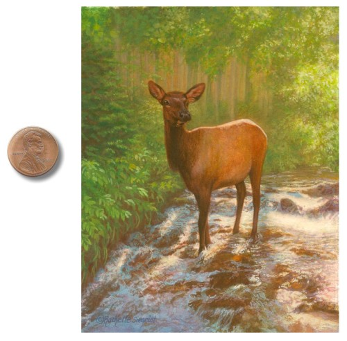 Elk in Rocky Mountain National Park painting