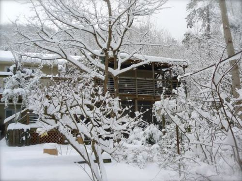 house back in snow