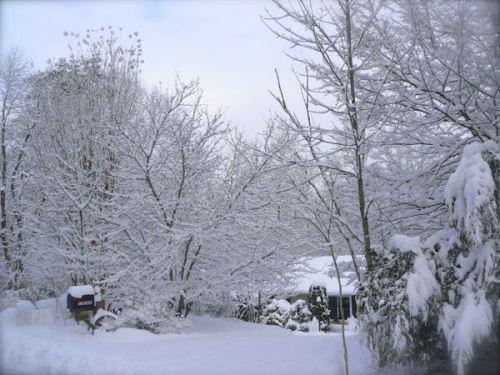 siegrist studio in the snow