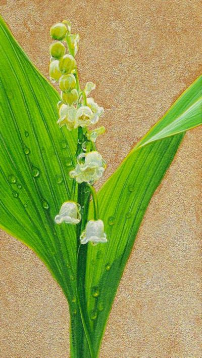 Lily of the Valley painting by wes siegrist