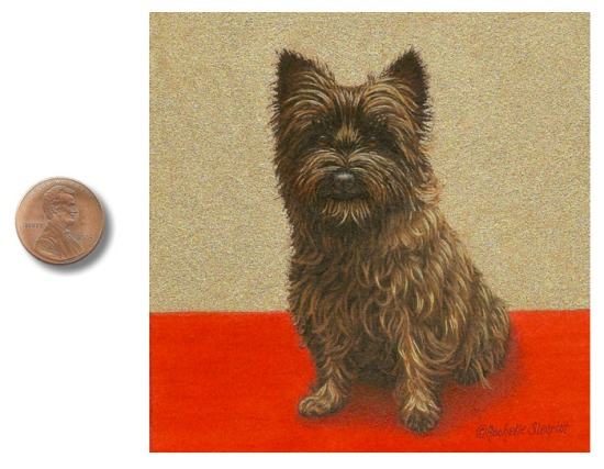 Carin Terrier dog painting_by_Rachelle_Siegrist1