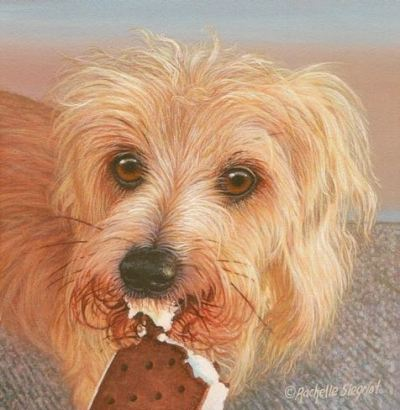 Wirehaired Dachshund painting by rachelle siegrist