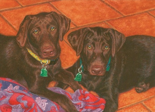 chocolate lab dog painting by Rachelle Siegrist