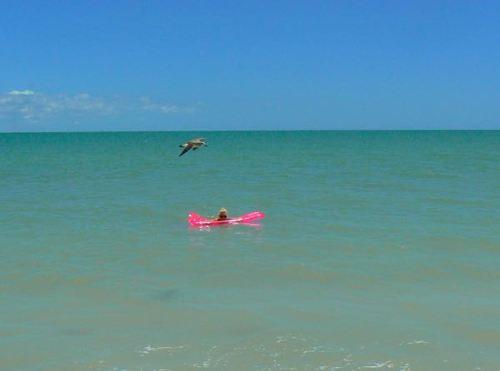 rachelle siegrist at gulfside beach park on sanibel