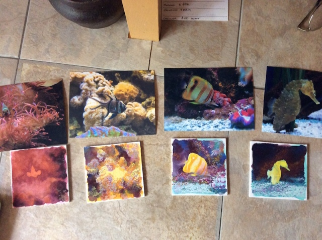 Wes Siegrist fish paintings in progress