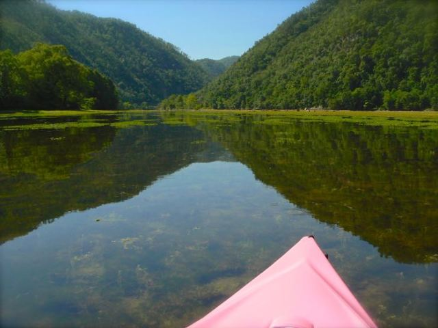 kayaking in the clear water of cholhowee lake