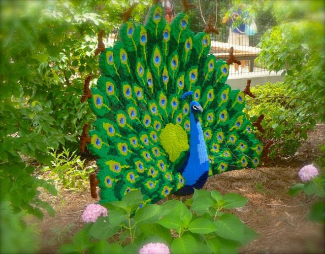 sean kenney's lego peacock