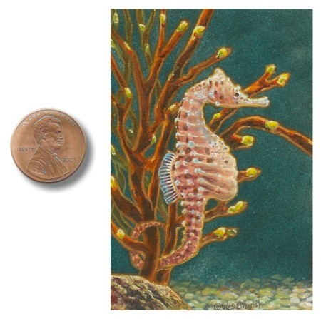 Pot-bellied_Seahorse_painting by_Wes_Siegrist