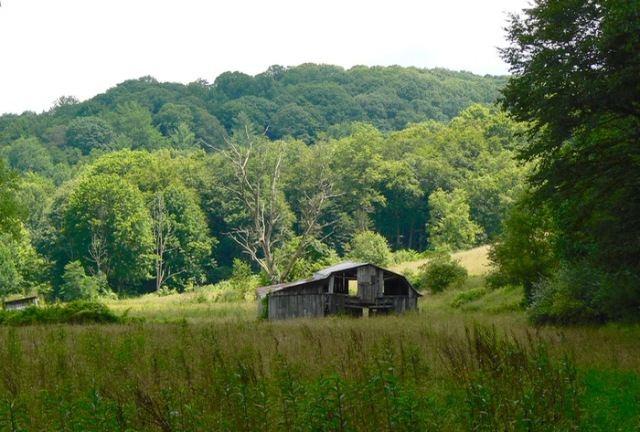 old barn along the Virginia Creeper Trail  - 1