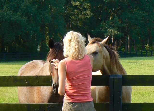 Rachelle Siegrist with plantation horses - 1