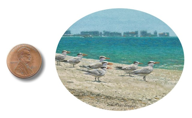 Royal Terns At Lovers Key miniature painting by Wes Siegrist
