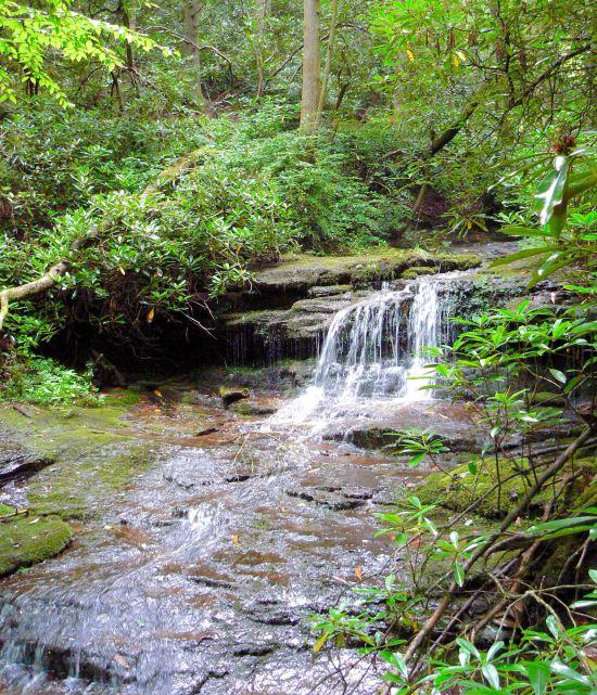 waterfalls in brevard NC - 1