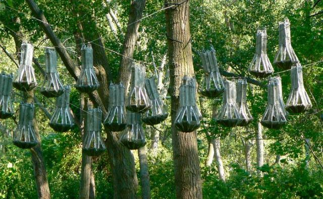 bat house sculpture at Tifft nature preserve