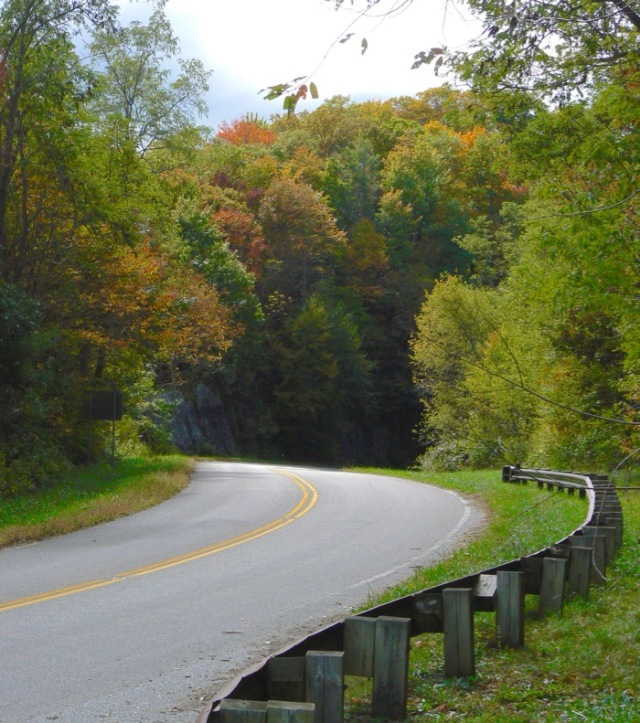 fall color on the cherohala skyway 2015