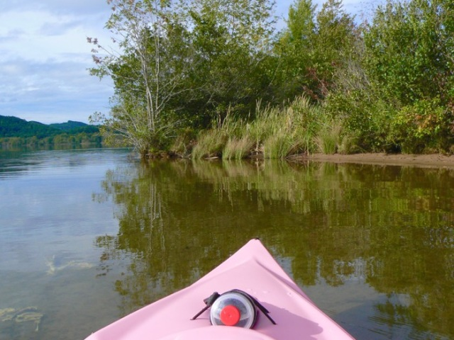 fun kayaking the tennessee river - 1