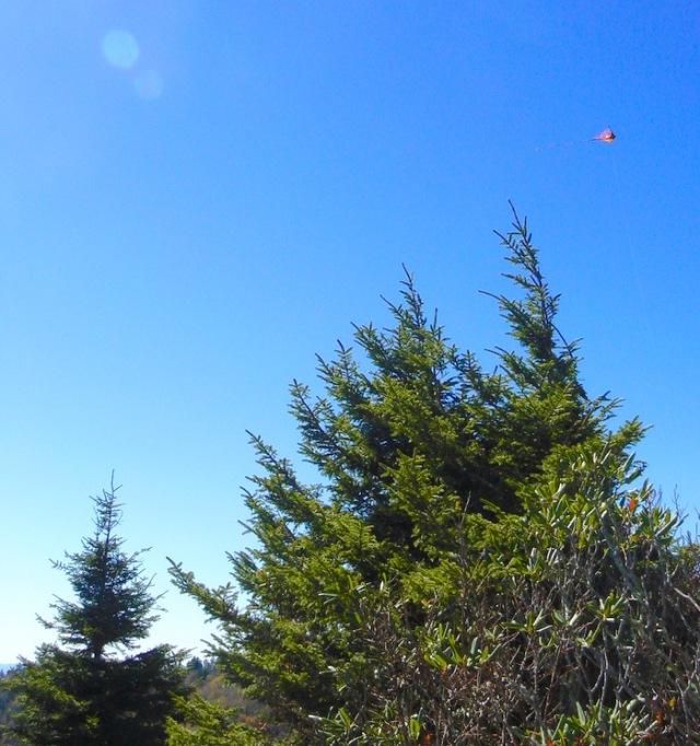 hiking carlies bunion in fall