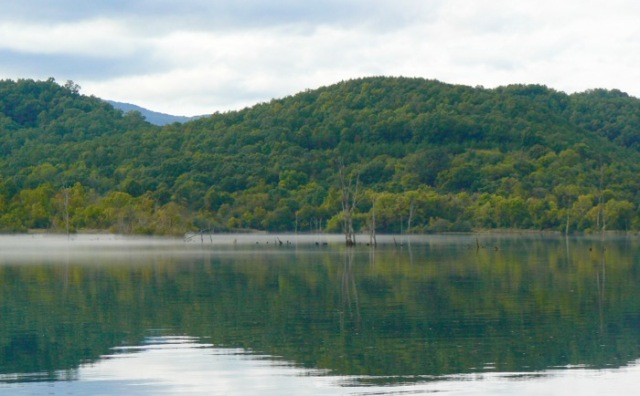 rachelle siegrist kayaking Abrams Creek. - 1 (1)