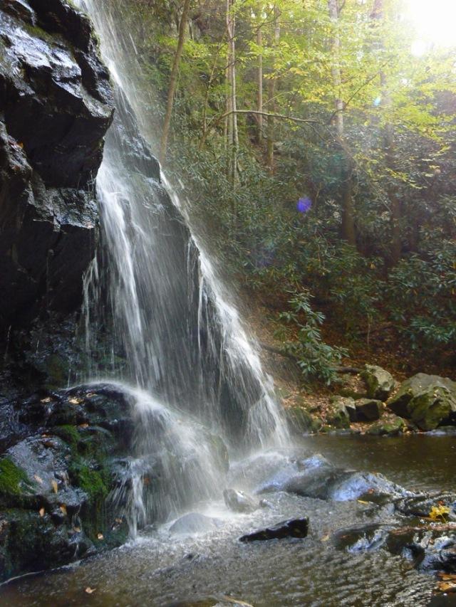 spruce flats falls in fall