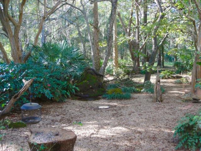 birdwatching roo at birdsong nature center - 1
