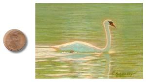 Plantation Swan by Rachelle Siegrist