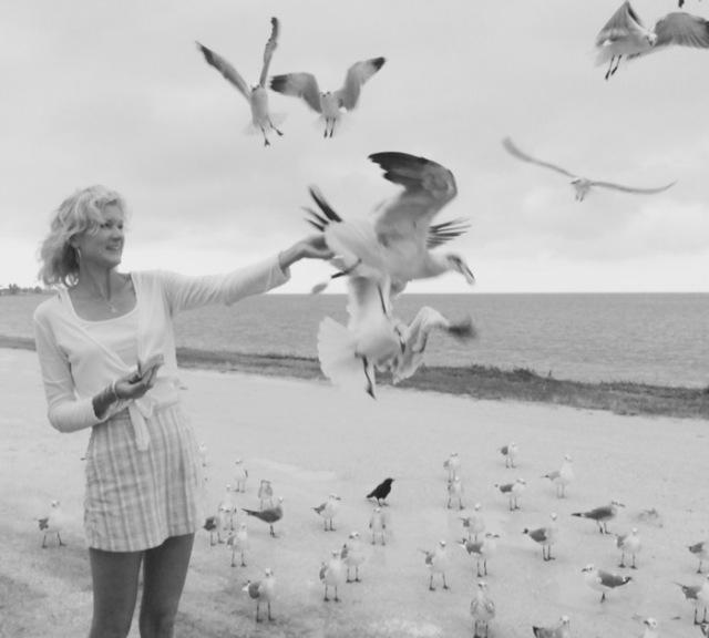rachelle siegrist feeding the seagulls near clearwater beach