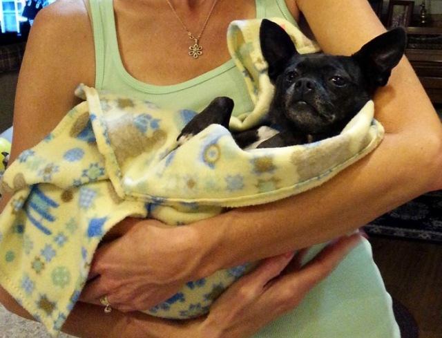 Rachelle siegrist holding a dog