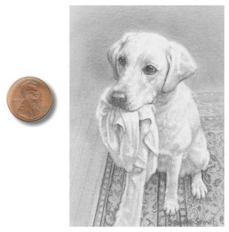 Dog Drawing by Rachelle Siegrist