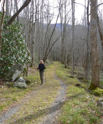 hiking old sugarlands trail smokies - 1