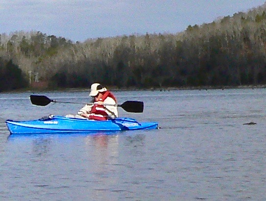 Kayaking by chilhowee lake wes siegrist - 1